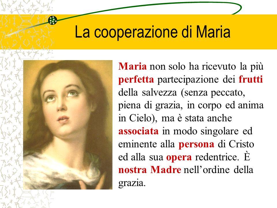 La cooperazione di Maria