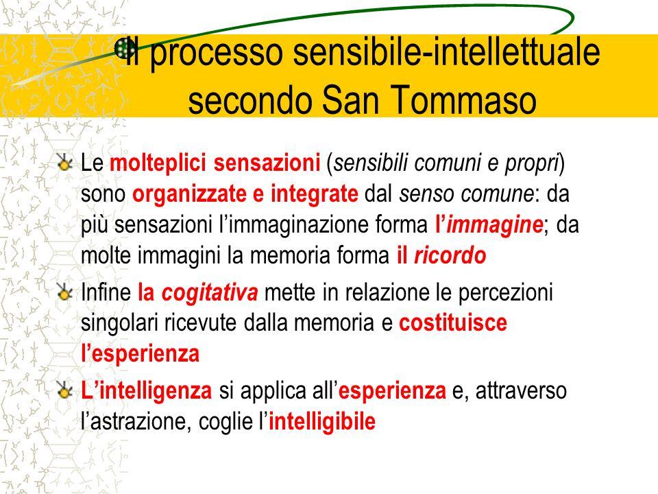 Il processo sensibile-intellettuale secondo San Tommaso