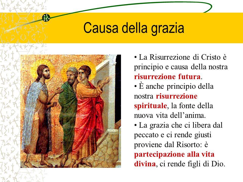Causa della grazia La Risurrezione di Cristo è principio e causa della nostra risurrezione futura.