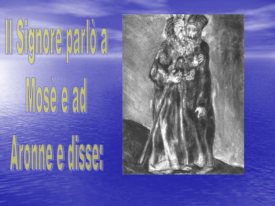 Il Signore parlò a Mosè e ad Aronne e disse: