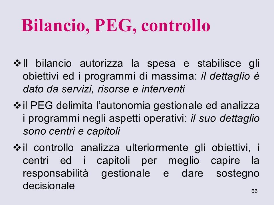 Bilancio, PEG, controllo
