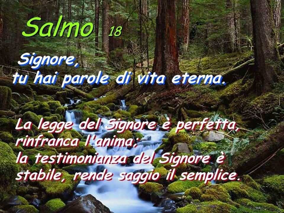 Salmo 18 Signore, tu hai parole di vita eterna.