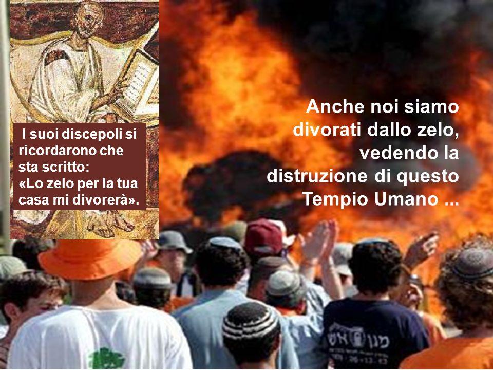 Anche noi siamo divorati dallo zelo, vedendo la distruzione di questo Tempio Umano ...