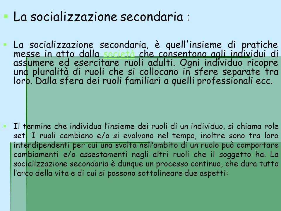 La socializzazione secondaria :