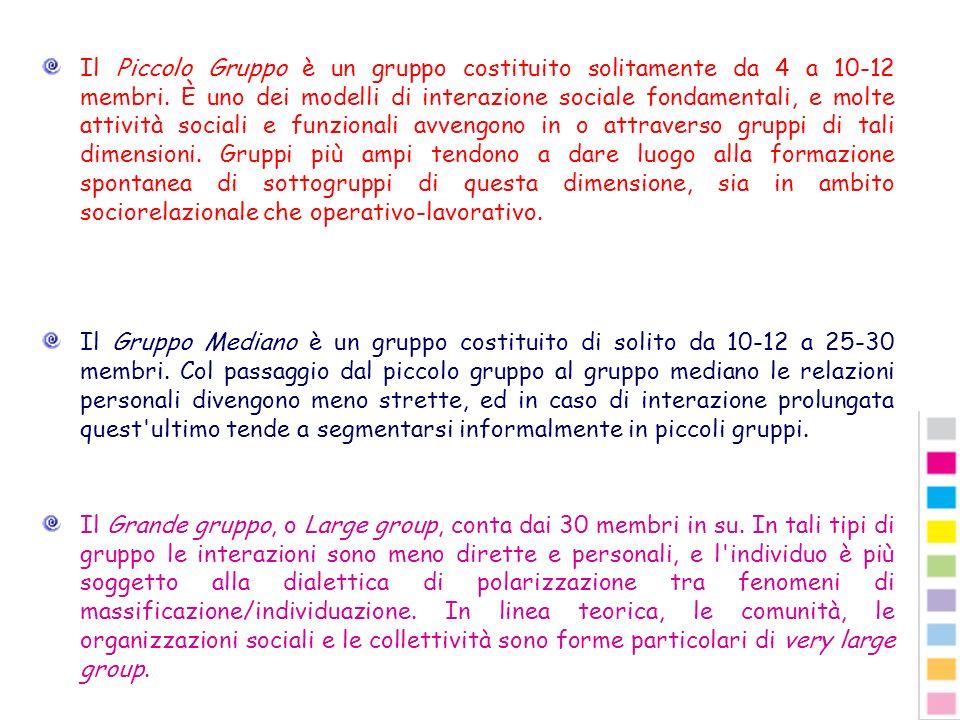 Il Piccolo Gruppo è un gruppo costituito solitamente da 4 a 10-12 membri. È uno dei modelli di interazione sociale fondamentali, e molte attività sociali e funzionali avvengono in o attraverso gruppi di tali dimensioni. Gruppi più ampi tendono a dare luogo alla formazione spontanea di sottogruppi di questa dimensione, sia in ambito sociorelazionale che operativo-lavorativo.