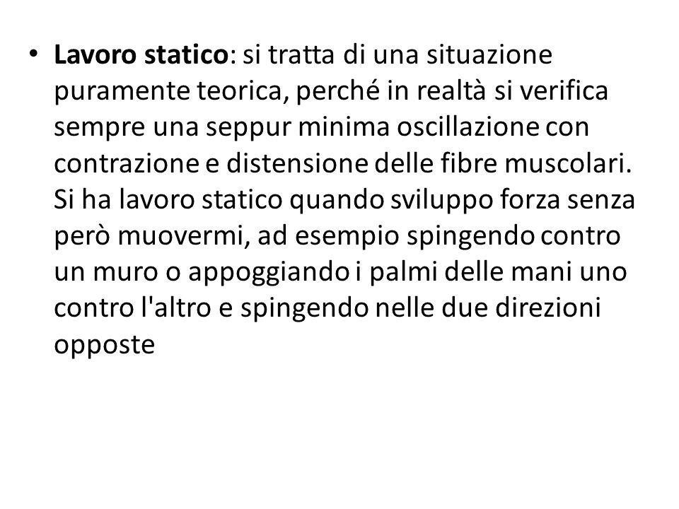 Lavoro statico: si tratta di una situazione puramente teorica, perché in realtà si verifica sempre una seppur minima oscillazione con contrazione e distensione delle fibre muscolari.