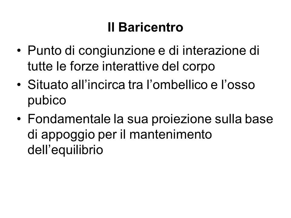 Il BaricentroPunto di congiunzione e di interazione di tutte le forze interattive del corpo. Situato all'incirca tra l'ombellico e l'osso pubico.