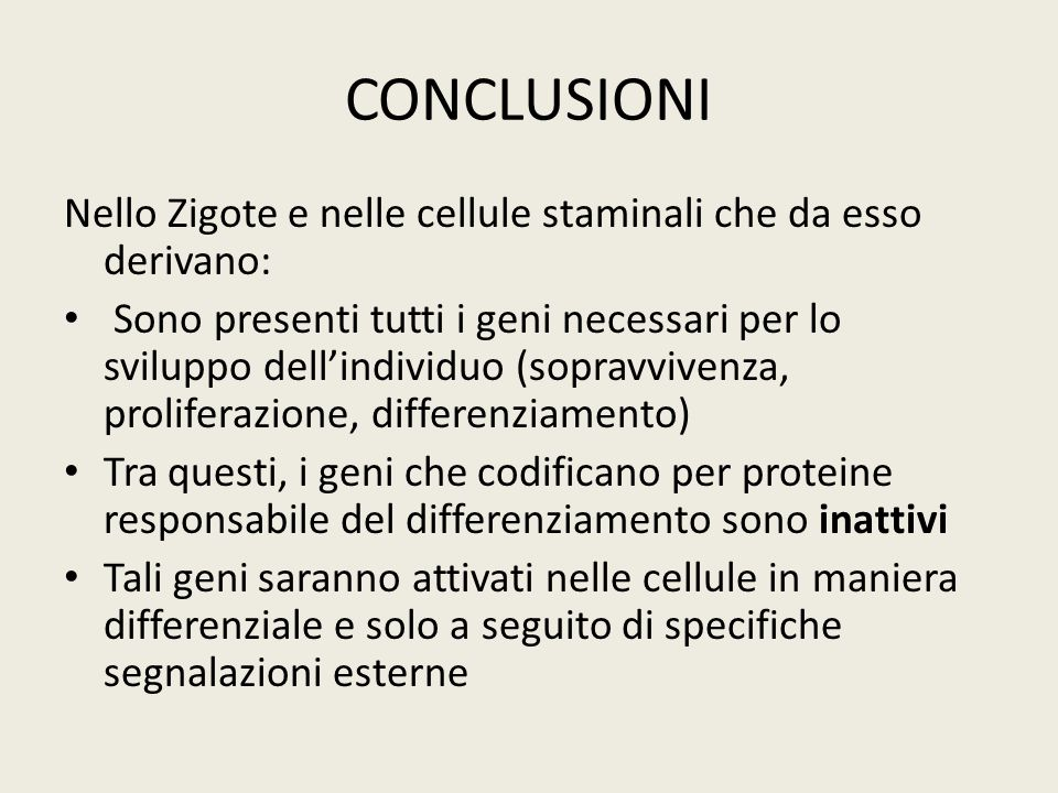 CONCLUSIONI Nello Zigote e nelle cellule staminali che da esso derivano:
