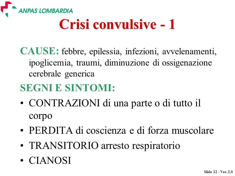 Crisi convulsive - 1 CAUSE: febbre, epilessia, infezioni, avvelenamenti, ipoglicemia, traumi, diminuzione di ossigenazione cerebrale generica.