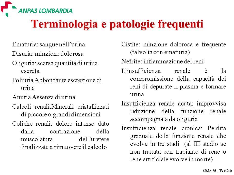 Terminologia e patologie frequenti
