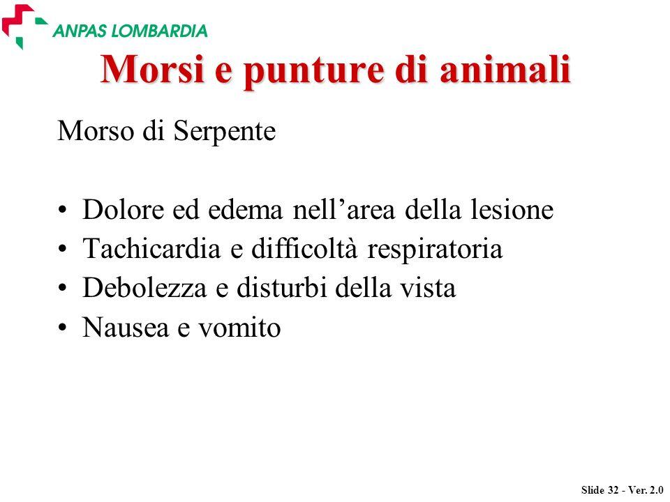 Morsi e punture di animali