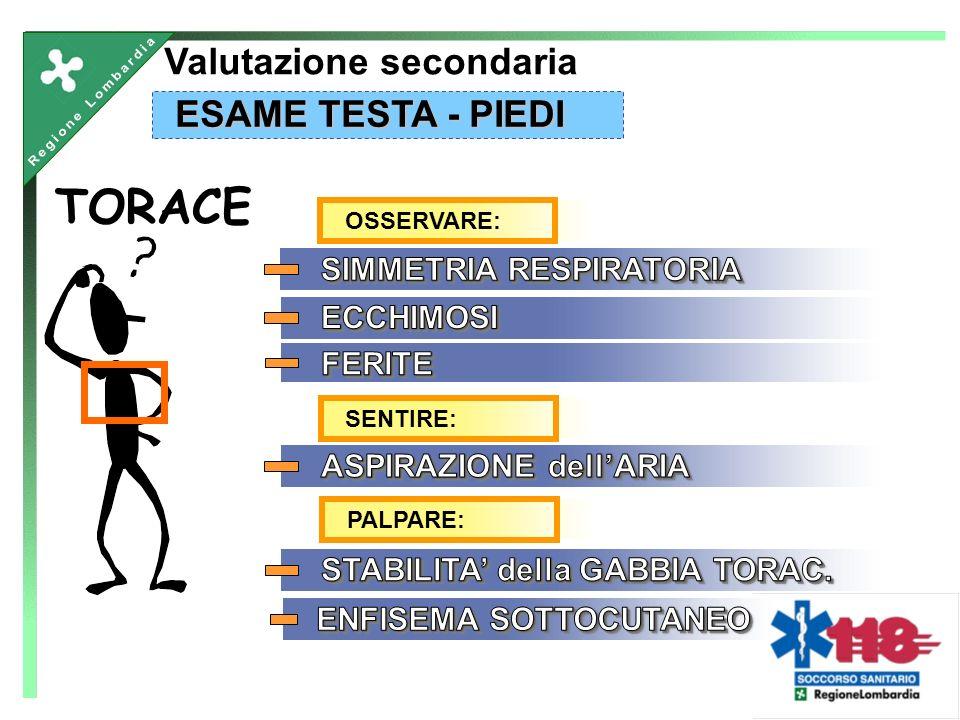 TORACE Valutazione secondaria ESAME TESTA - PIEDI