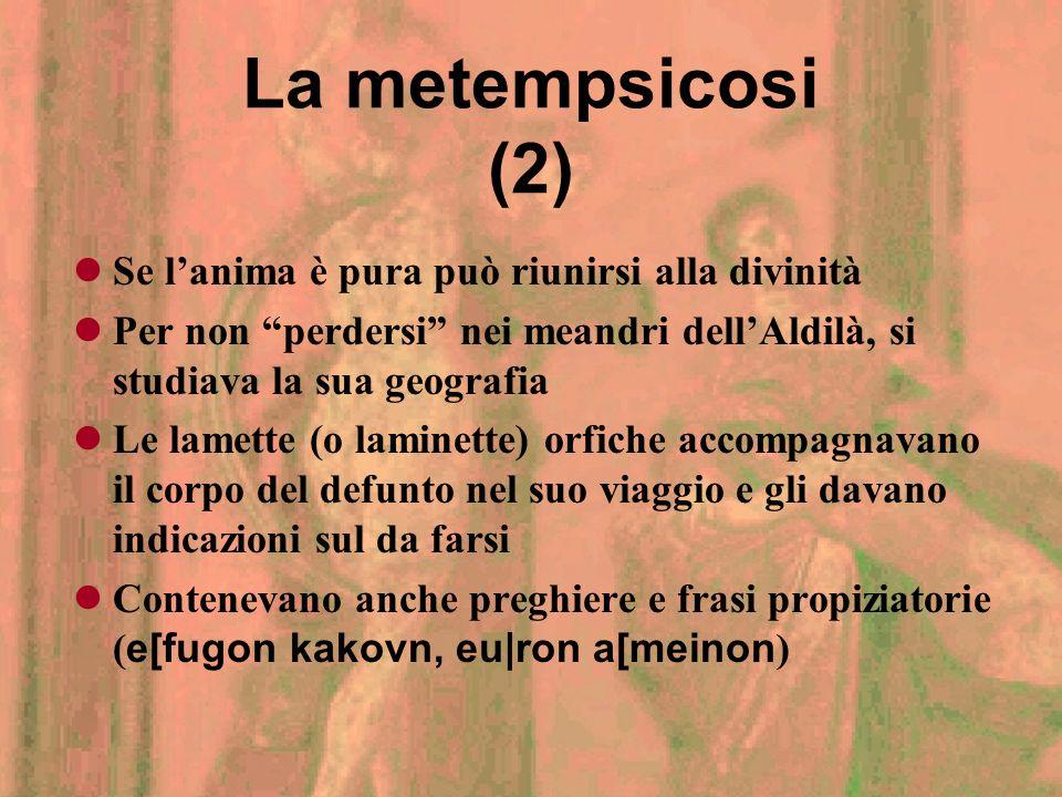 La metempsicosi (2) Se l'anima è pura può riunirsi alla divinità