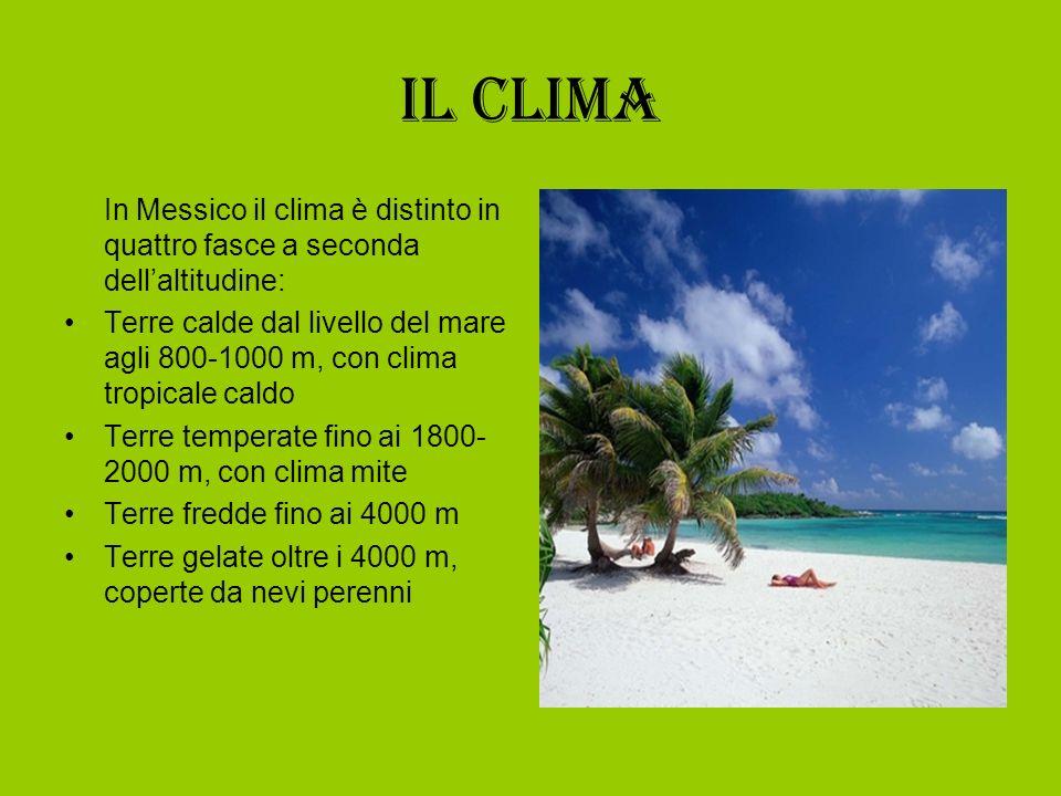 Il clima In Messico il clima è distinto in quattro fasce a seconda dell'altitudine: