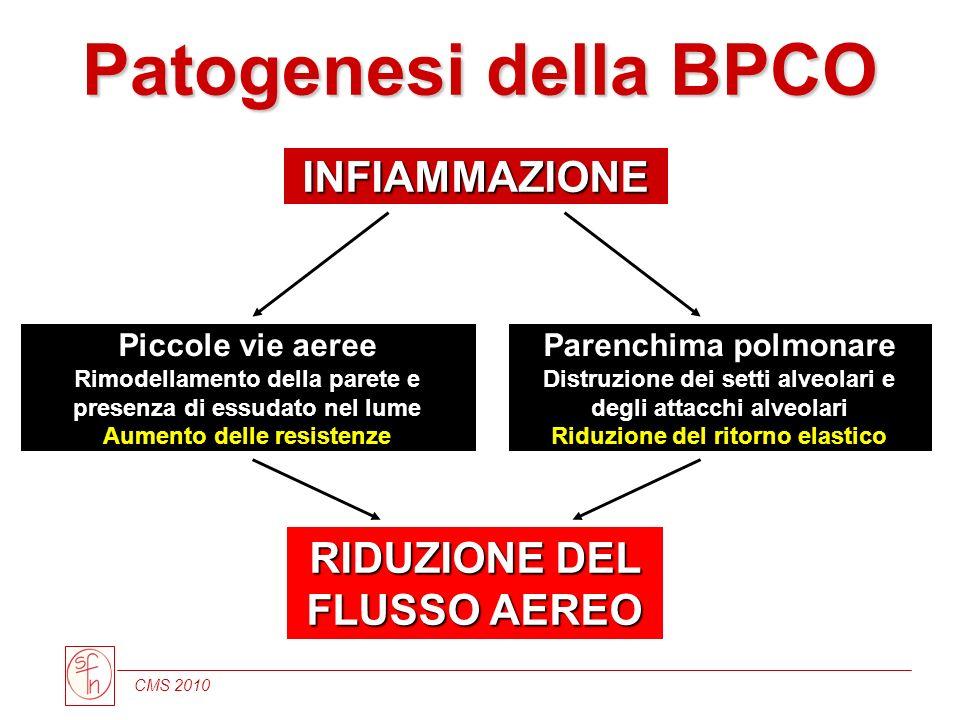 Patogenesi della BPCO INFIAMMAZIONE RIDUZIONE DEL FLUSSO AEREO