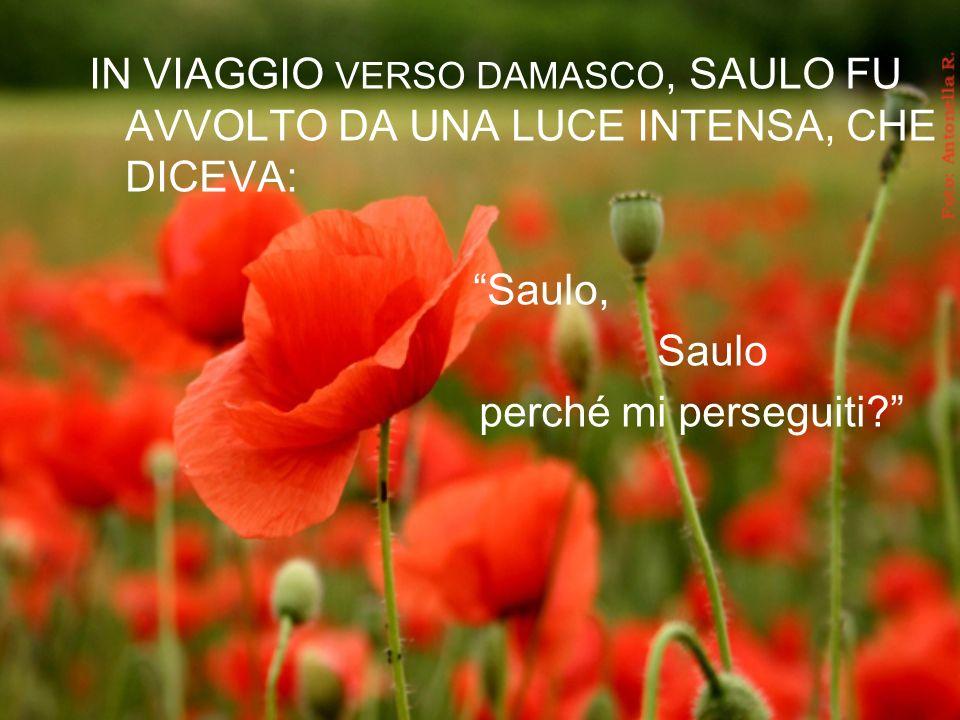 IN VIAGGIO VERSO DAMASCO, SAULO FU AVVOLTO DA UNA LUCE INTENSA, CHE DICEVA: