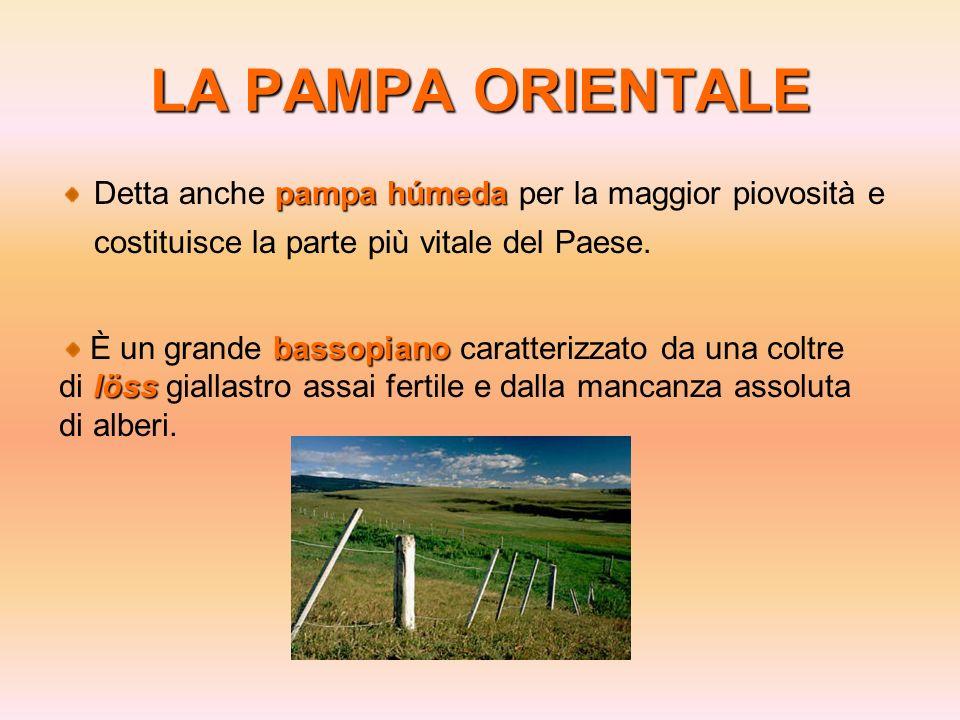LA PAMPA ORIENTALEDetta anche pampa húmeda per la maggior piovosità e costituisce la parte più vitale del Paese.