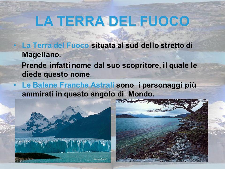 LA TERRA DEL FUOCO La Terra del Fuoco situata al sud dello stretto di Magellano.