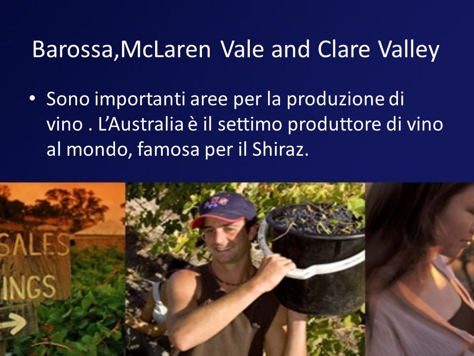 Barossa,McLaren Vale and Clare Valley