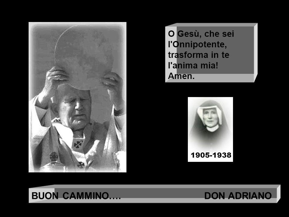 BUON CAMMINO…. DON ADRIANO