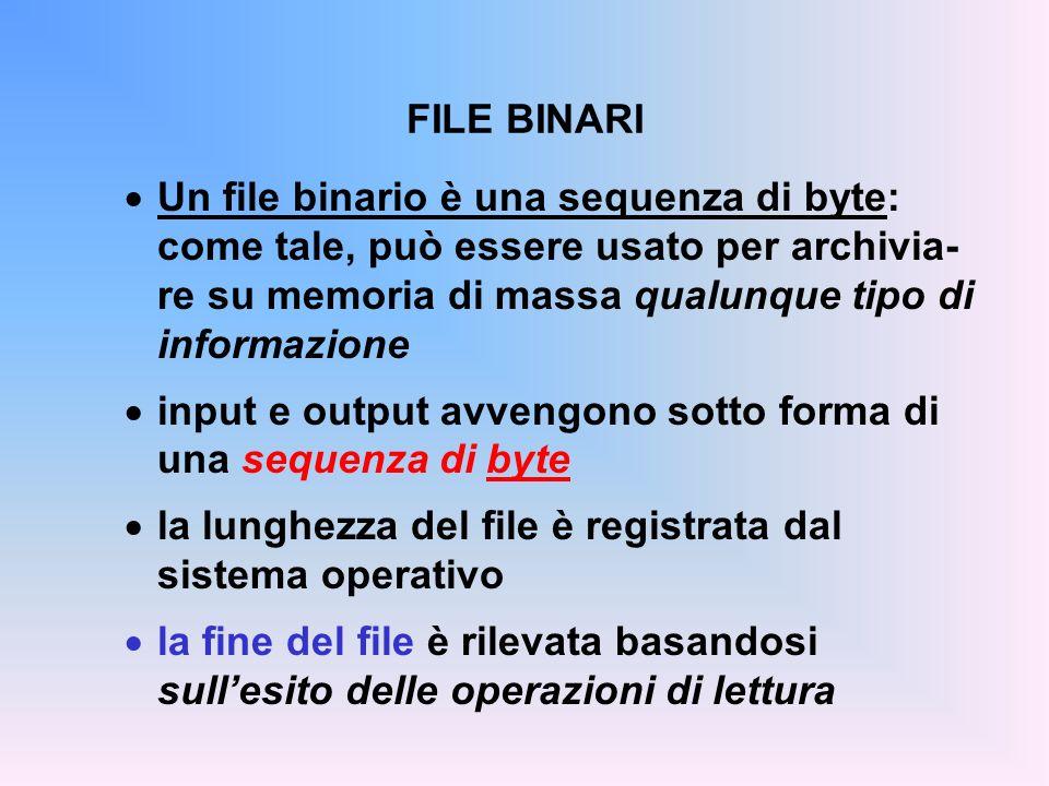 FILE BINARI Un file binario è una sequenza di byte: come tale, può essere usato per archivia- re su memoria di massa qualunque tipo di informazione.