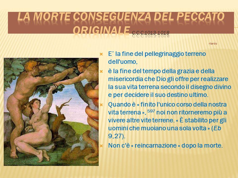 La morte conseguenza del peccato originale c.c.c.1013-1018