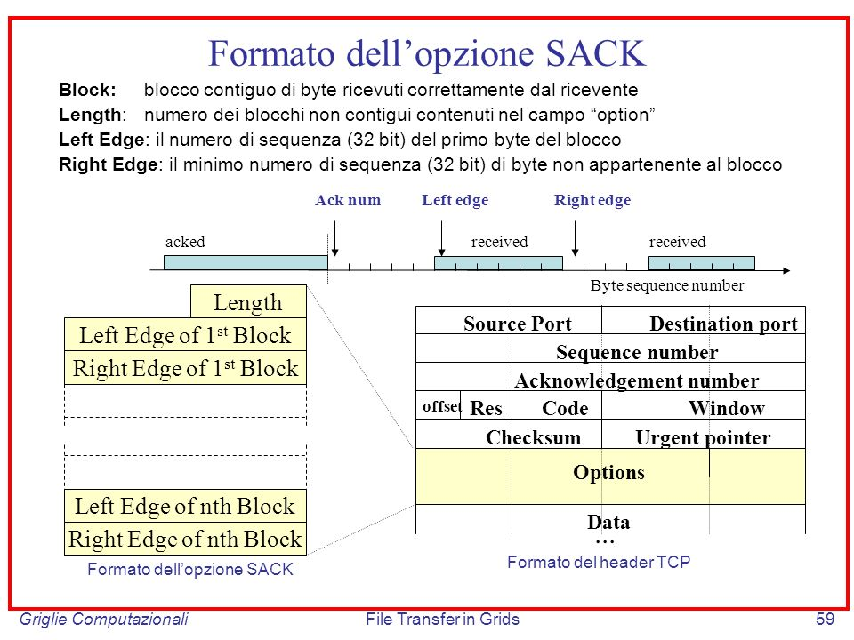 Formato dell'opzione SACK