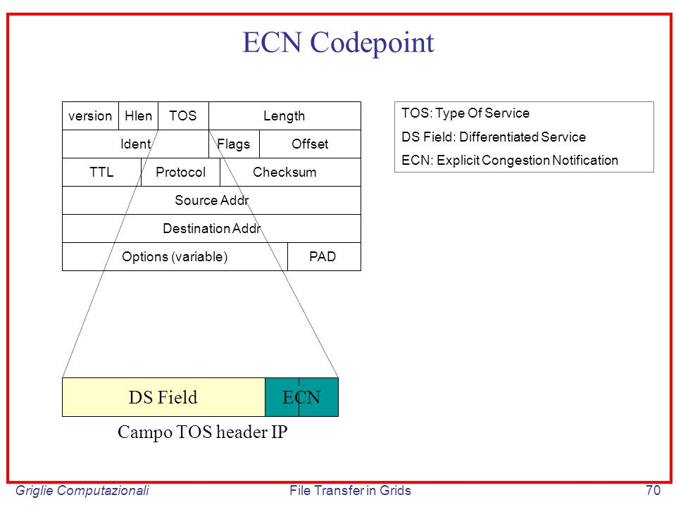 ECN Codepoint DS Field ECN Campo TOS header IP version Hlen TOS Length