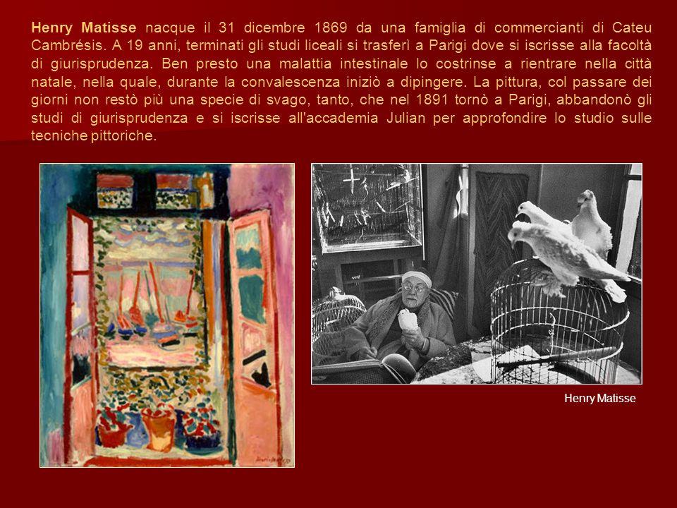 Henry Matisse nacque il 31 dicembre 1869 da una famiglia di commercianti di Cateu Cambrésis. A 19 anni, terminati gli studi liceali si trasferì a Parigi dove si iscrisse alla facoltà di giurisprudenza. Ben presto una malattia intestinale lo costrinse a rientrare nella città natale, nella quale, durante la convalescenza iniziò a dipingere. La pittura, col passare dei giorni non restò più una specie di svago, tanto, che nel 1891 tornò a Parigi, abbandonò gli studi di giurisprudenza e si iscrisse all accademia Julian per approfondire lo studio sulle tecniche pittoriche.
