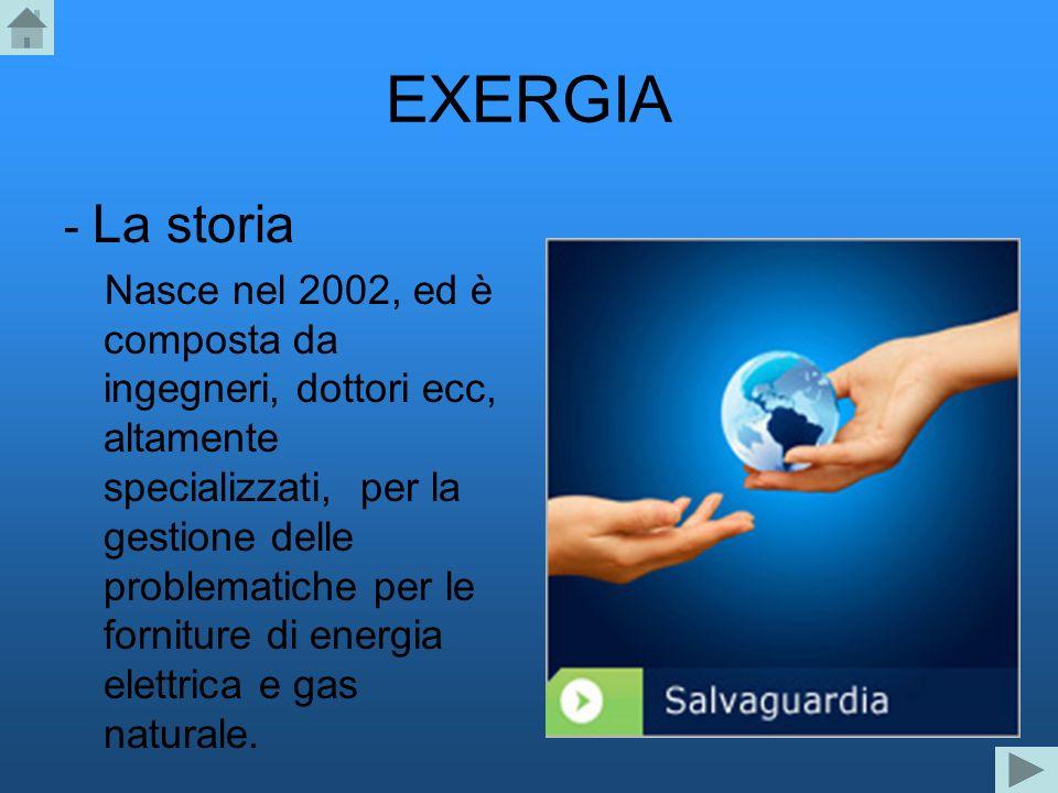 EXERGIA - La storia.