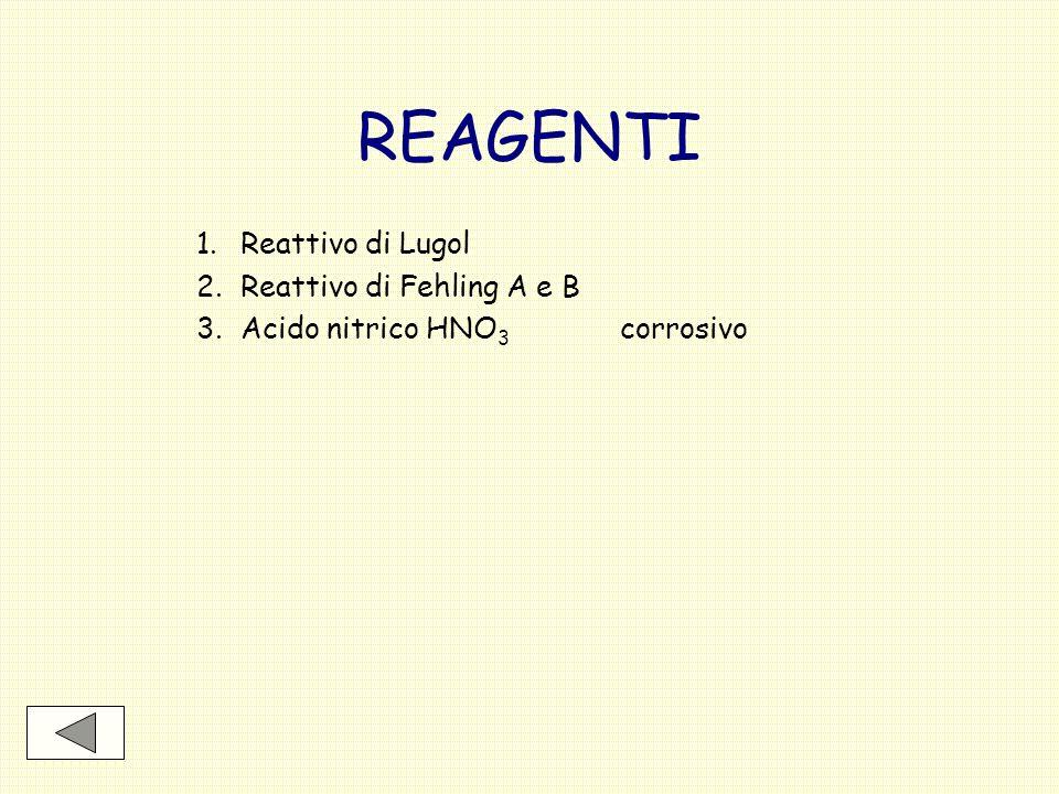 REAGENTI Reattivo di Lugol 2. Reattivo di Fehling A e B