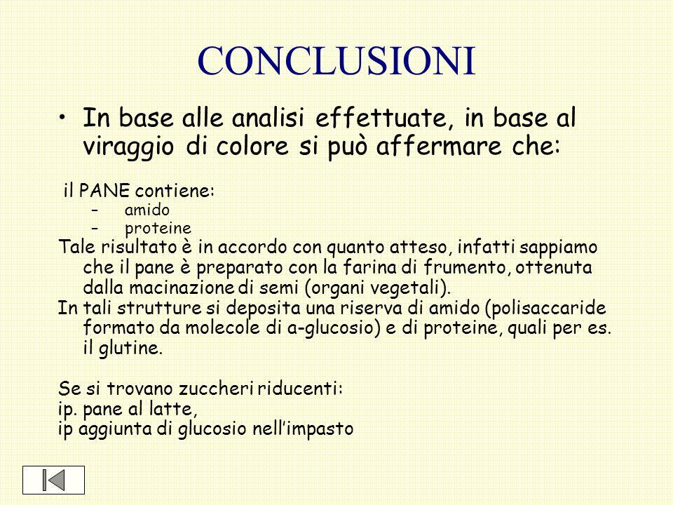 CONCLUSIONI In base alle analisi effettuate, in base al viraggio di colore si può affermare che: il PANE contiene: