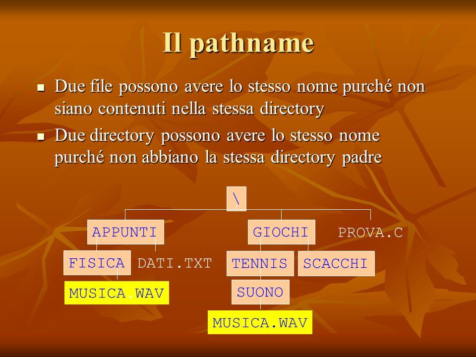 Il pathname Due file possono avere lo stesso nome purché non siano contenuti nella stessa directory.