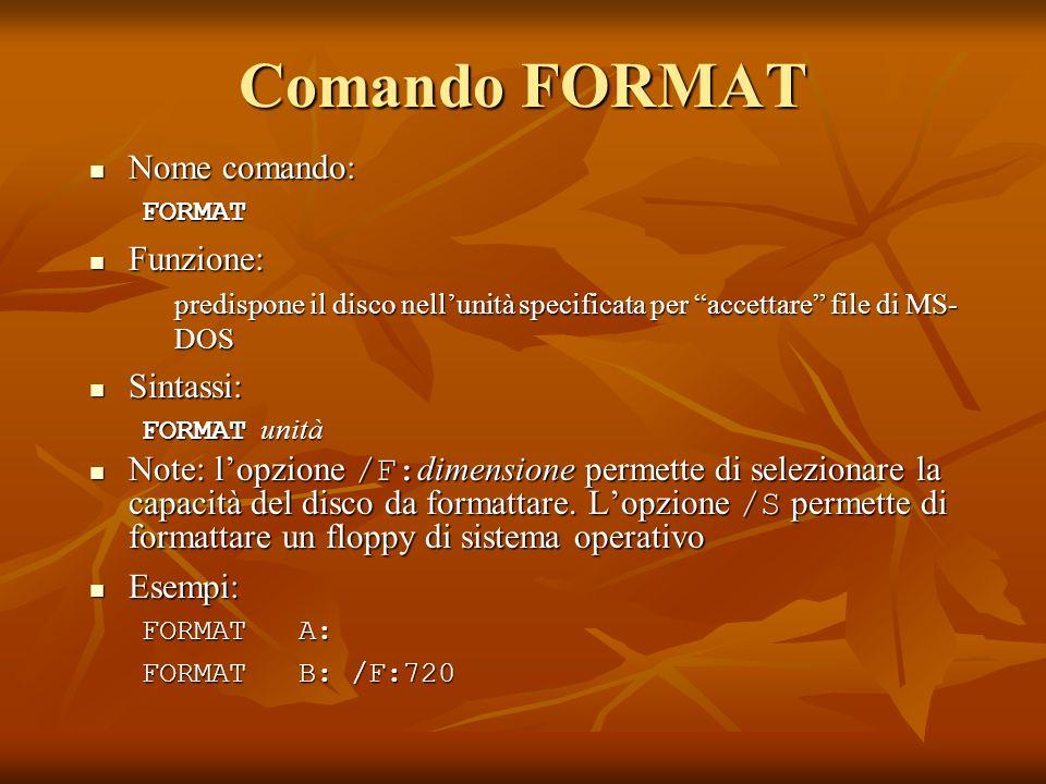 Comando FORMAT Nome comando: Funzione: Sintassi: