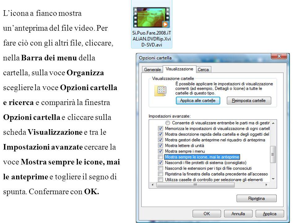 L'icona a fianco mostra un'anteprima del file video