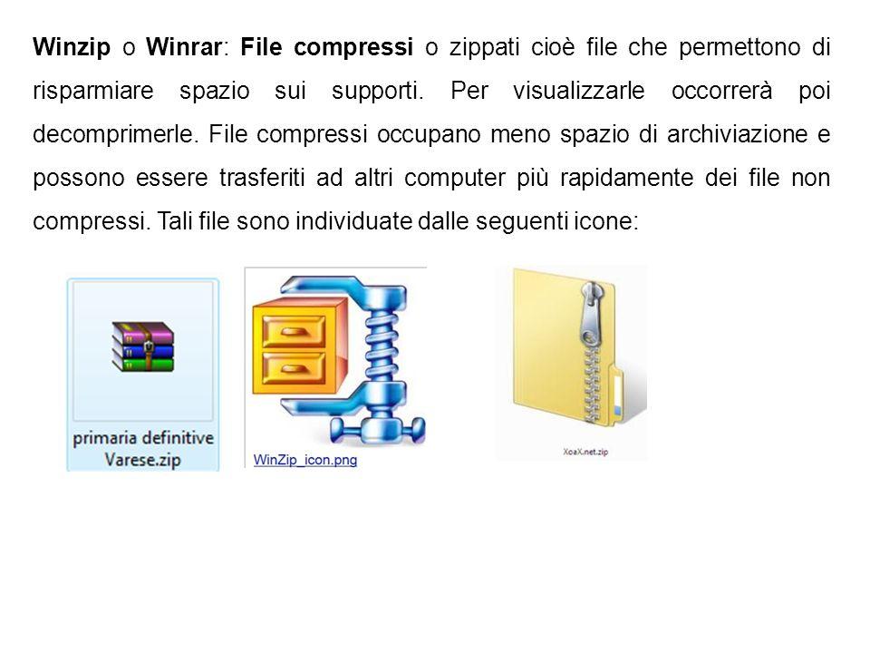 Winzip o Winrar: File compressi o zippati cioè file che permettono di risparmiare spazio sui supporti.