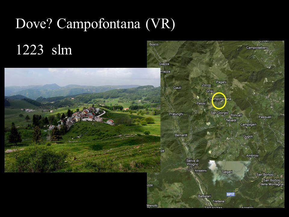 Dove Campofontana (VR)