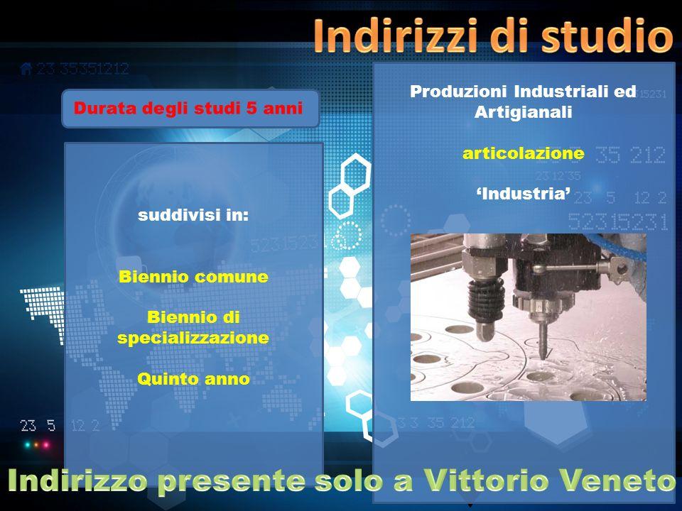 Indirizzo presente solo a Vittorio Veneto