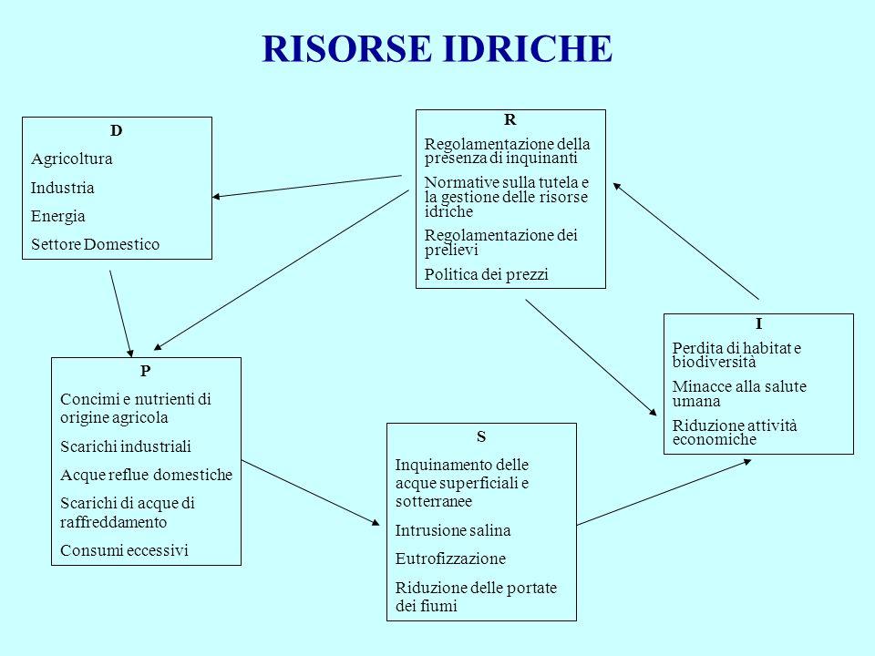 RISORSE IDRICHE R D Regolamentazione della presenza di inquinanti