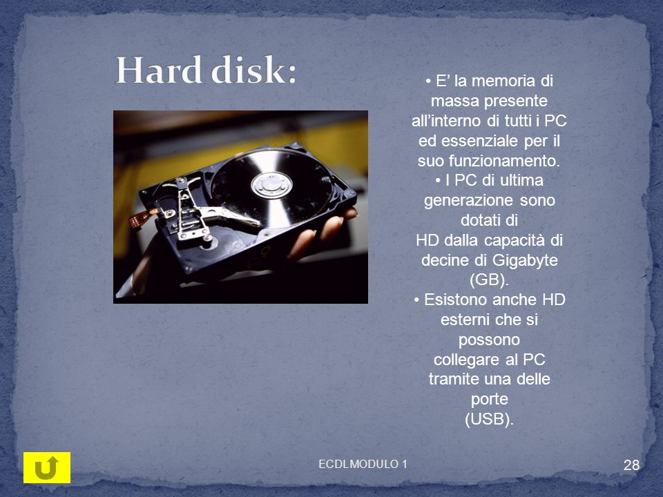 Hard disk: • E' la memoria di massa presente