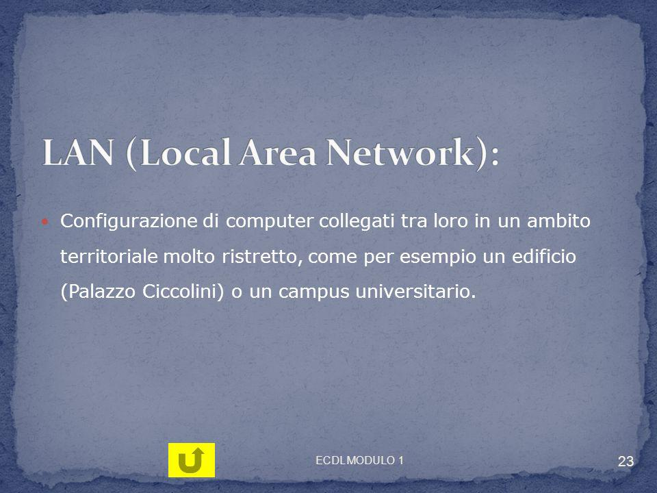LAN (Local Area Network):