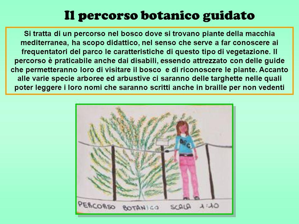 Il percorso botanico guidato