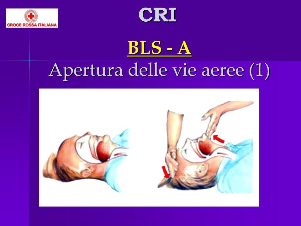 BLS - A Apertura delle vie aeree (1)