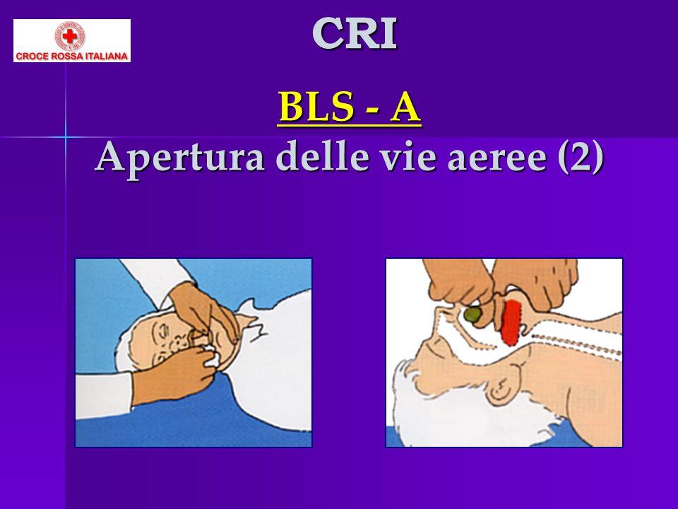 BLS - A Apertura delle vie aeree (2)