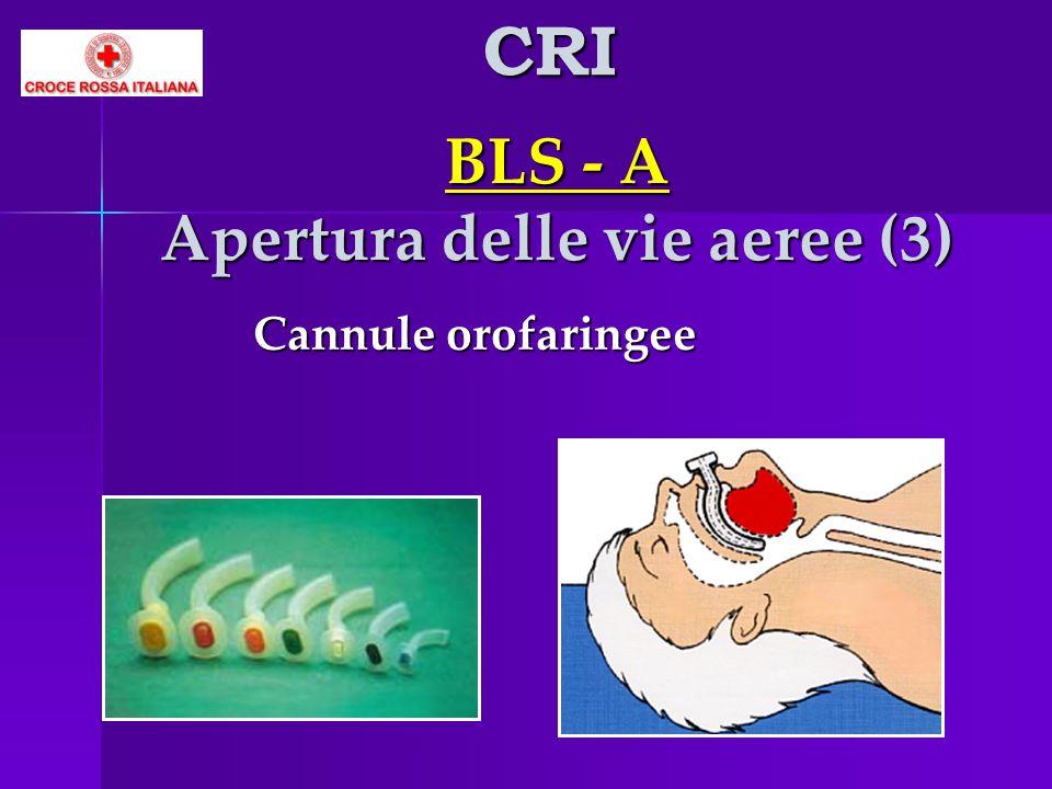 BLS - A Apertura delle vie aeree (3)