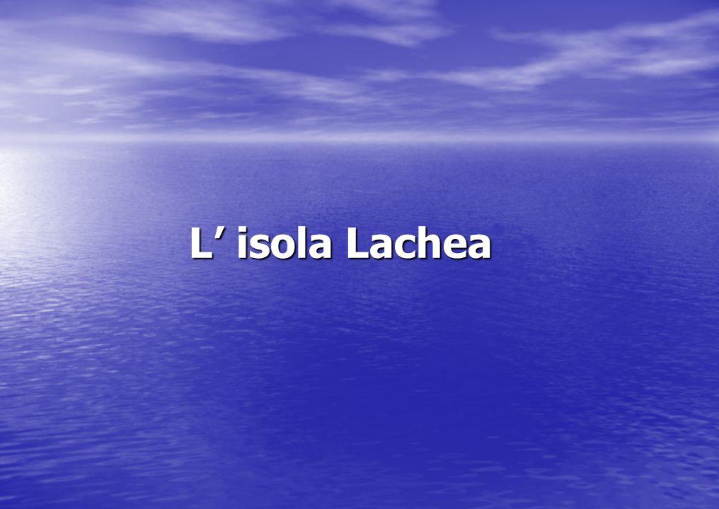 L' isola Lachea