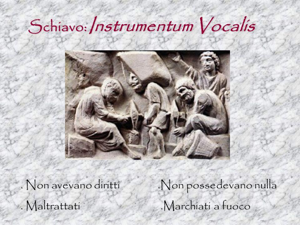 Schiavo: Instrumentum Vocalis