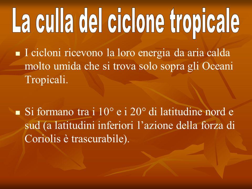 La culla del ciclone tropicale