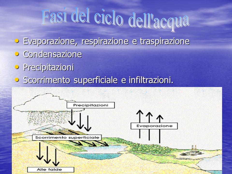 Fasi del ciclo dell acqua