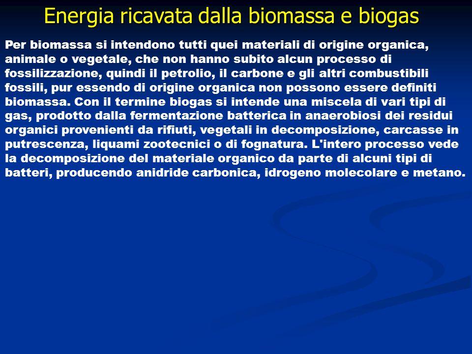 Energia ricavata dalla biomassa e biogas